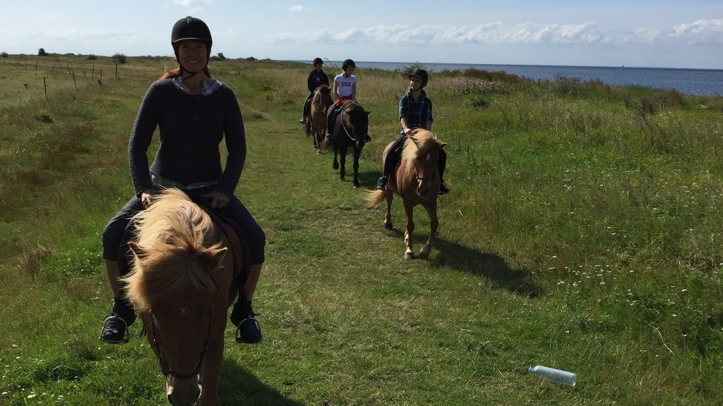 Copenhagen Horseback Riding