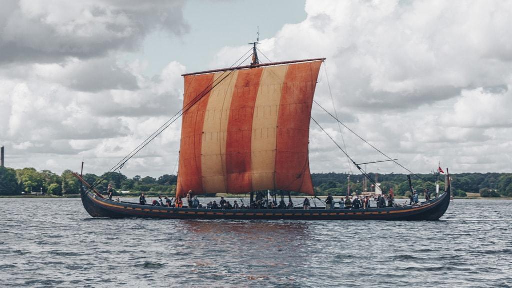 Vikings Roskilde