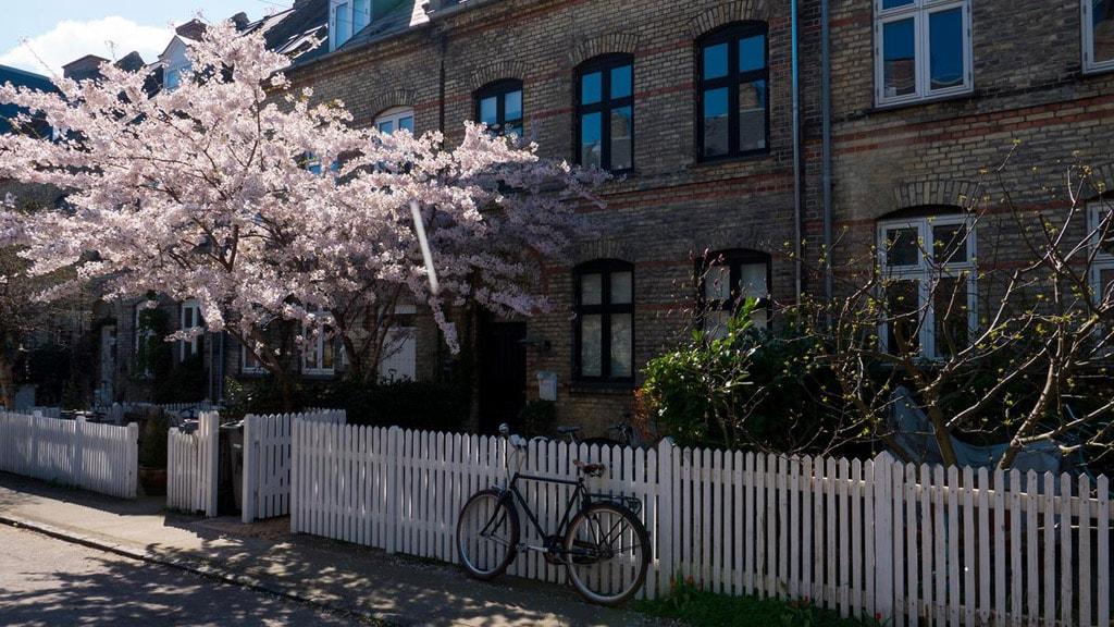 Humleby in Copenhagen's Vesterbro area