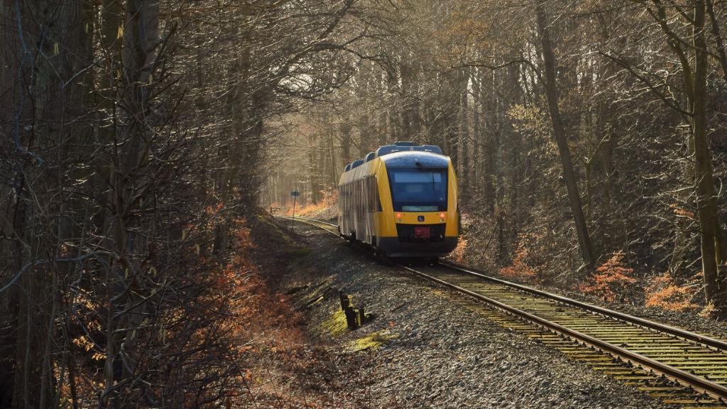 Det gule lokaltog i Nordsjælland kører gennem skoven