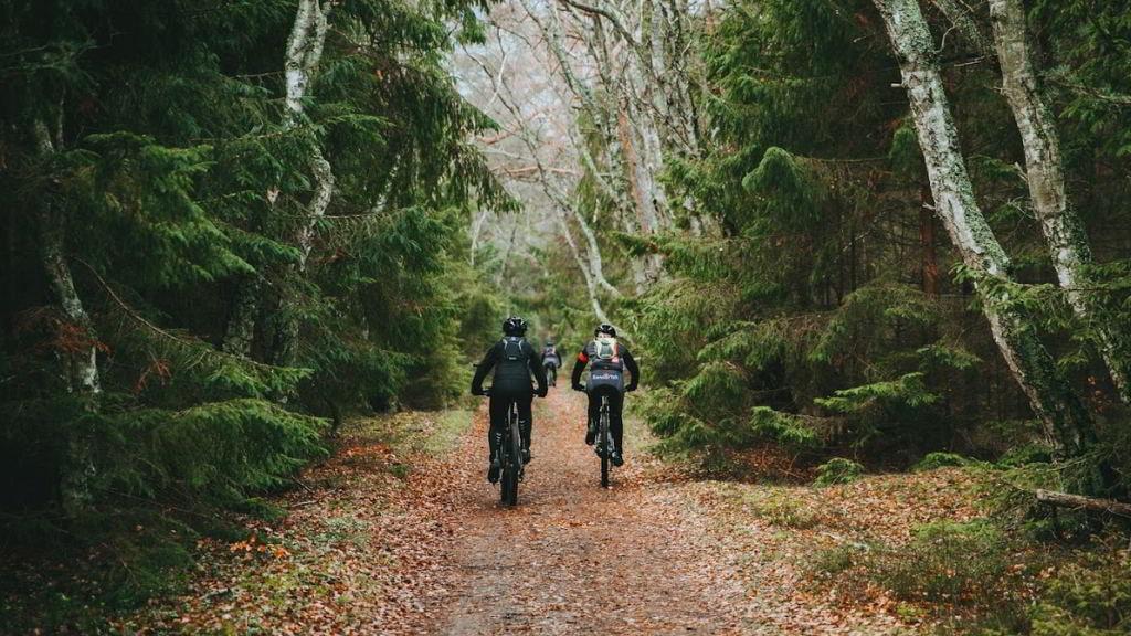 2 MTB cyklister på sti i Tisvildehegn