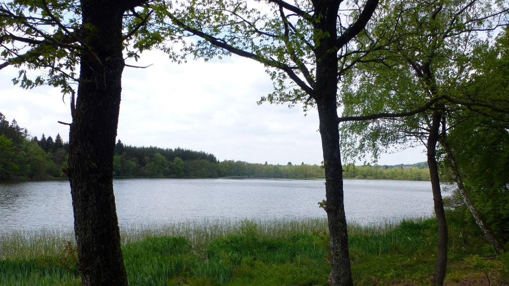 Salten Langsø