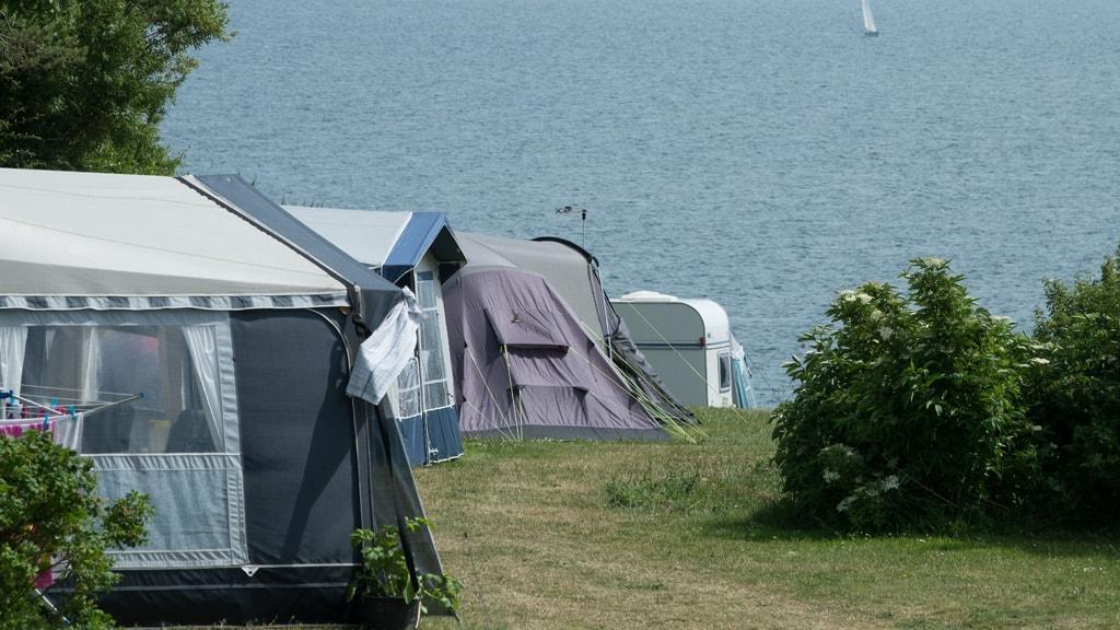 Blushøj Camping