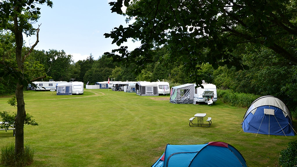 Camping in green surroundings | Darum Camping