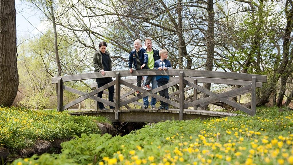Vognsboelparken | green oasis in Esbjerg