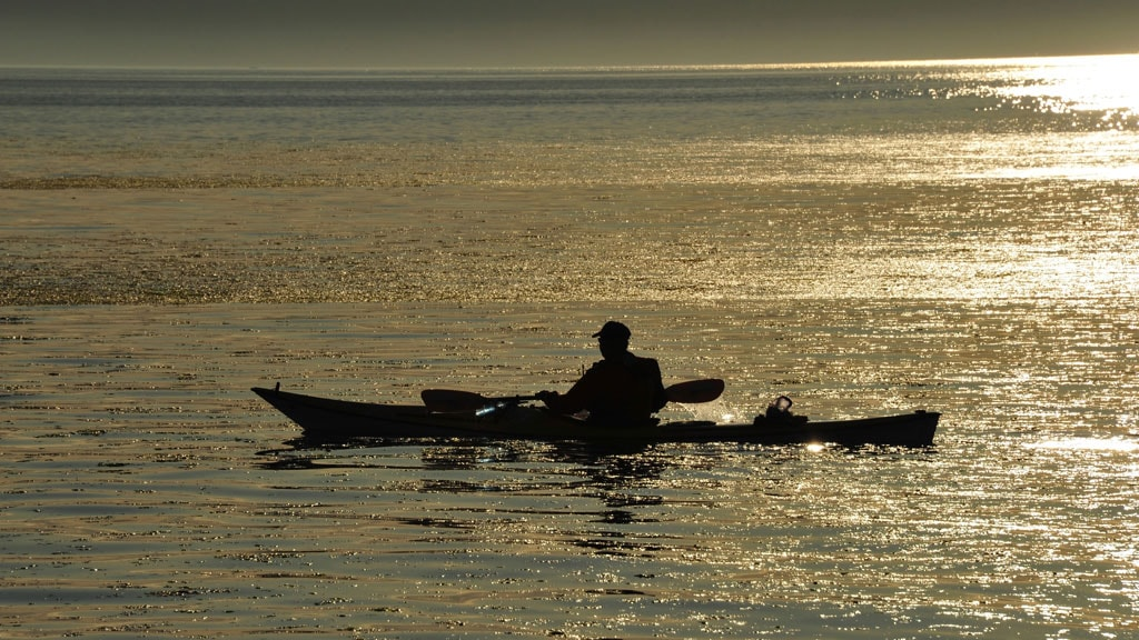 kayak in the Wadden Sea | VisitRibeEsbjerg