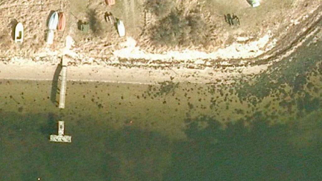 Fiskeplads Lyngs Odde (Ny Lillebæltsbro)
