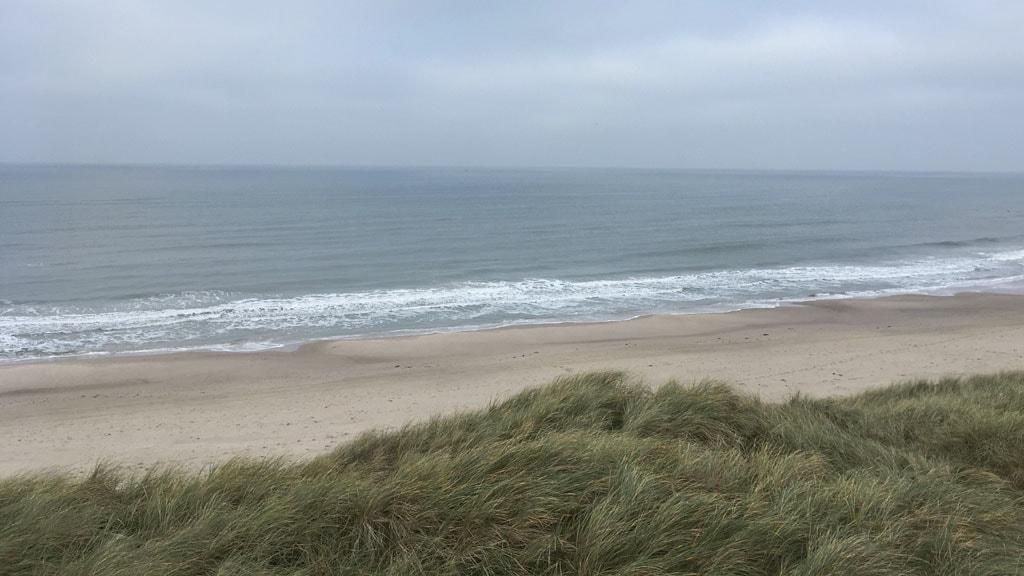 Krage Strand