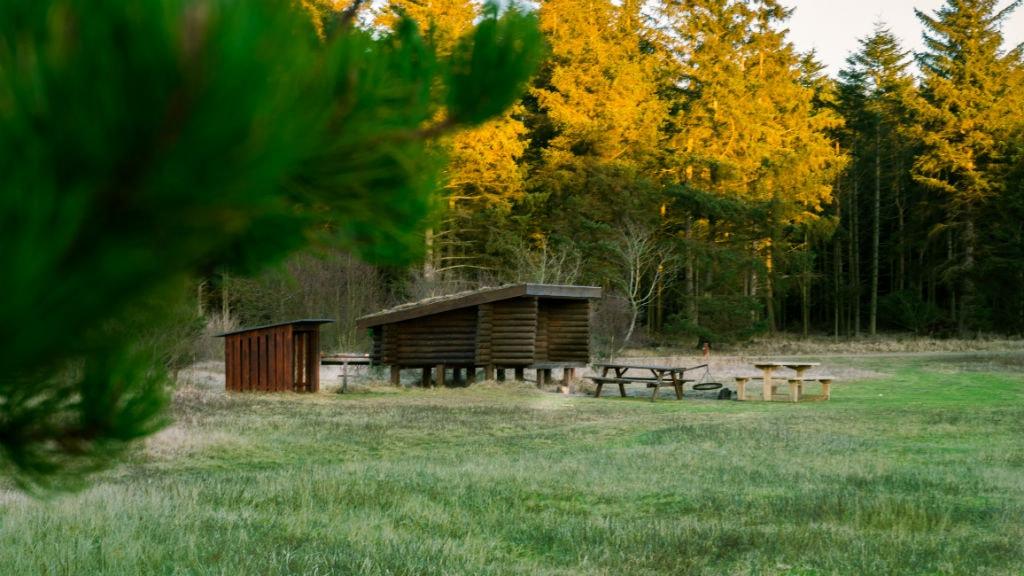Tornby Klitplantage
