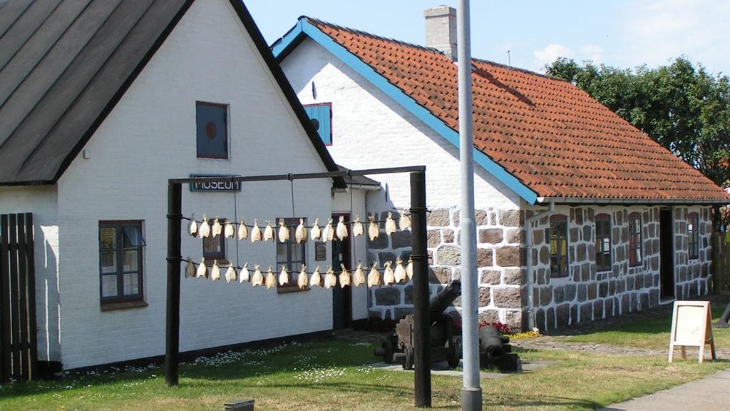 Hirtshals Museum