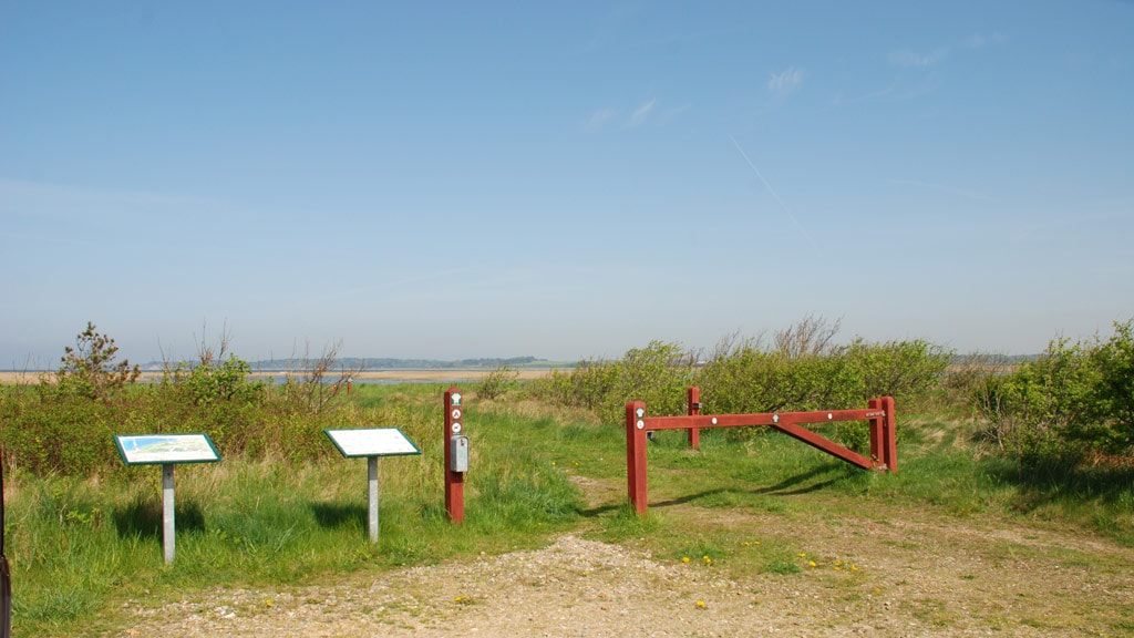 Geddal Beach Meadows