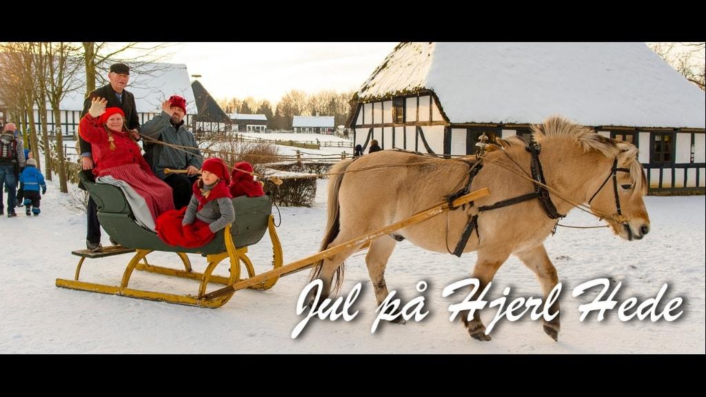 Frilandsmuseet Hjerl Hede - kane
