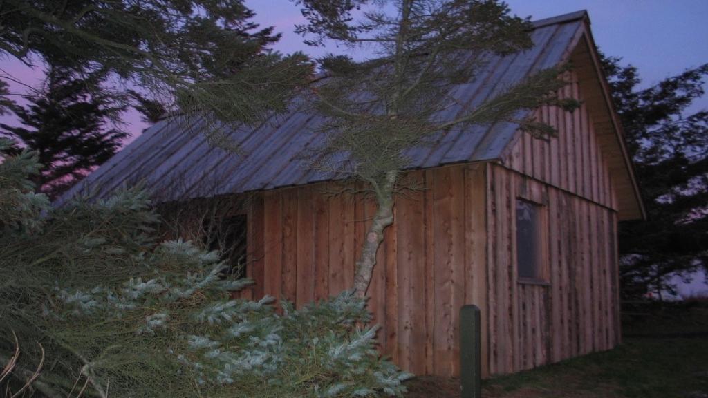 Madpakkehus ved krogshede fugletårn