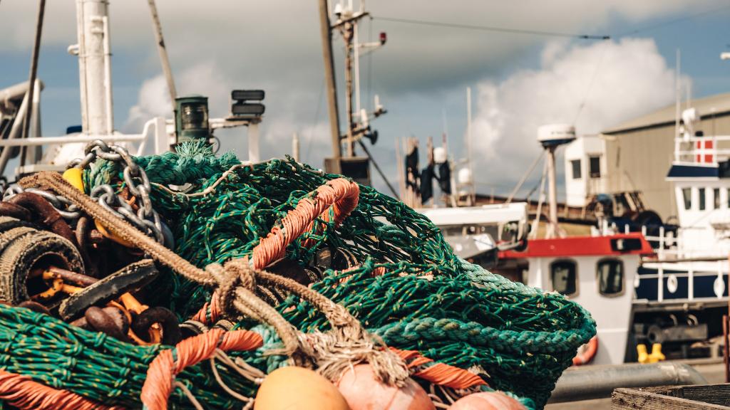 Thorsminde Havn - trawl