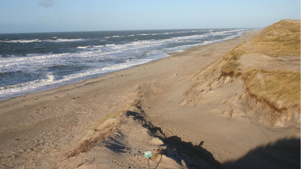 Kjærgaard Beach