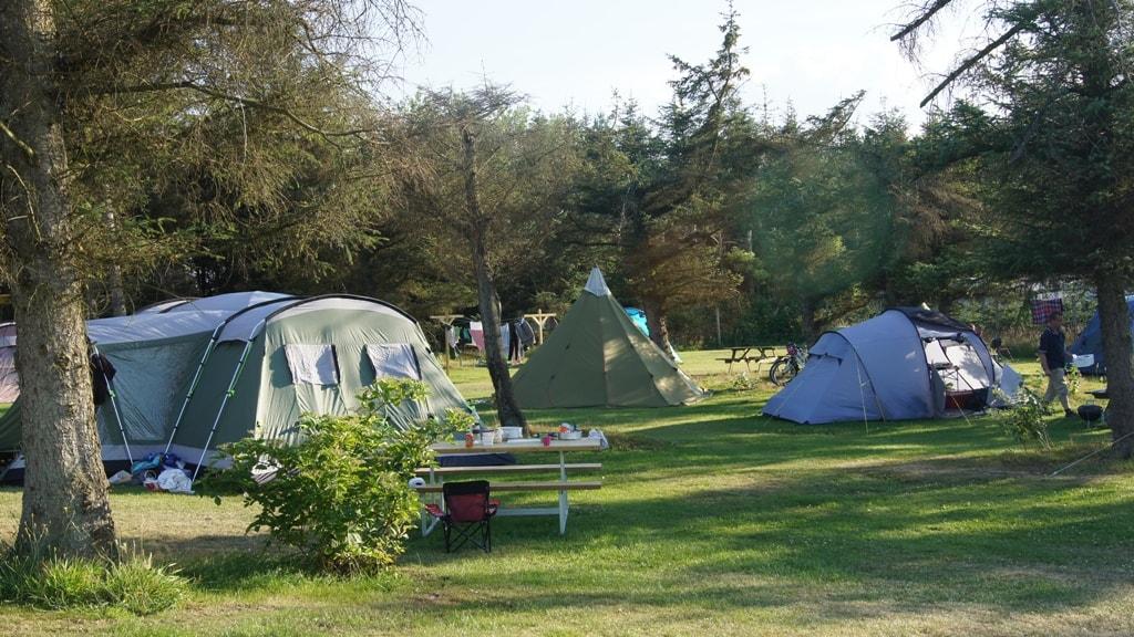 Grønhøj Strand Camping