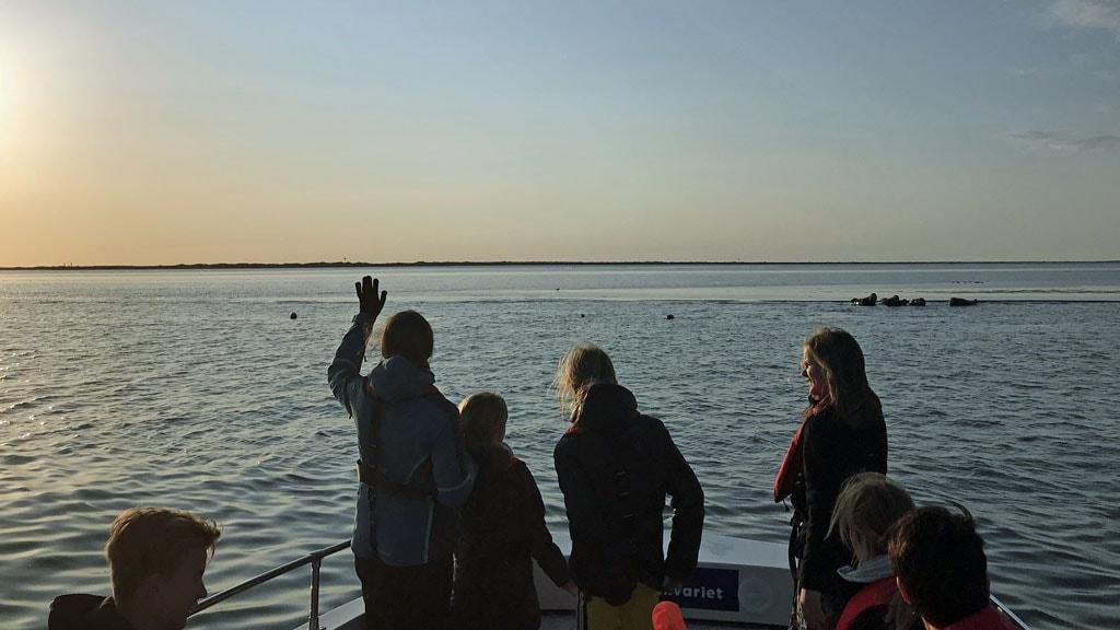Solnedgang sejltur JyllandsAkvariet