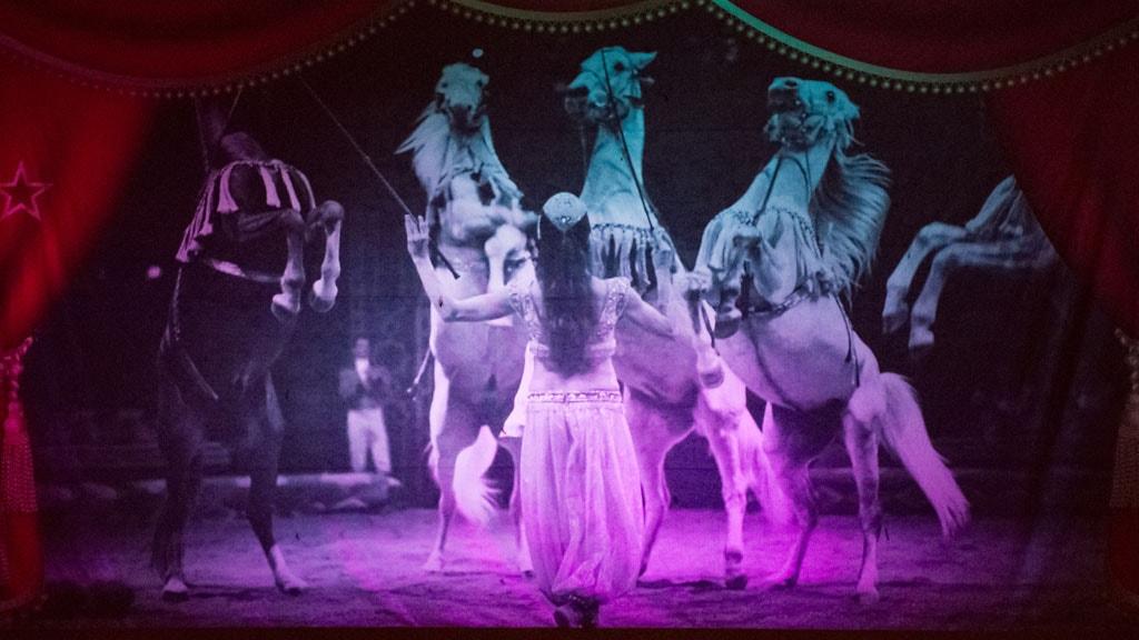 cirkusgården