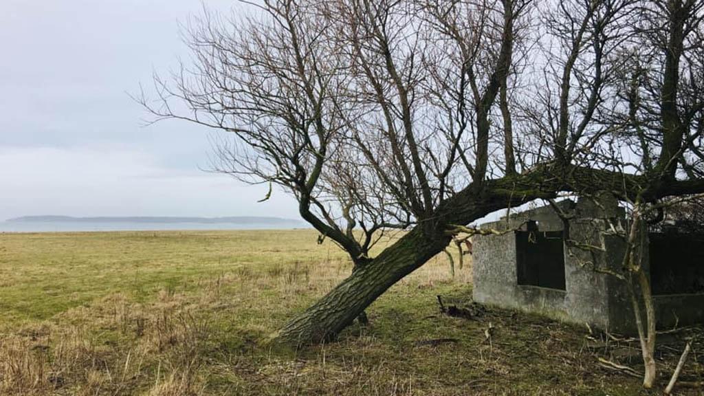 Dræet ved Nordfyns kyst