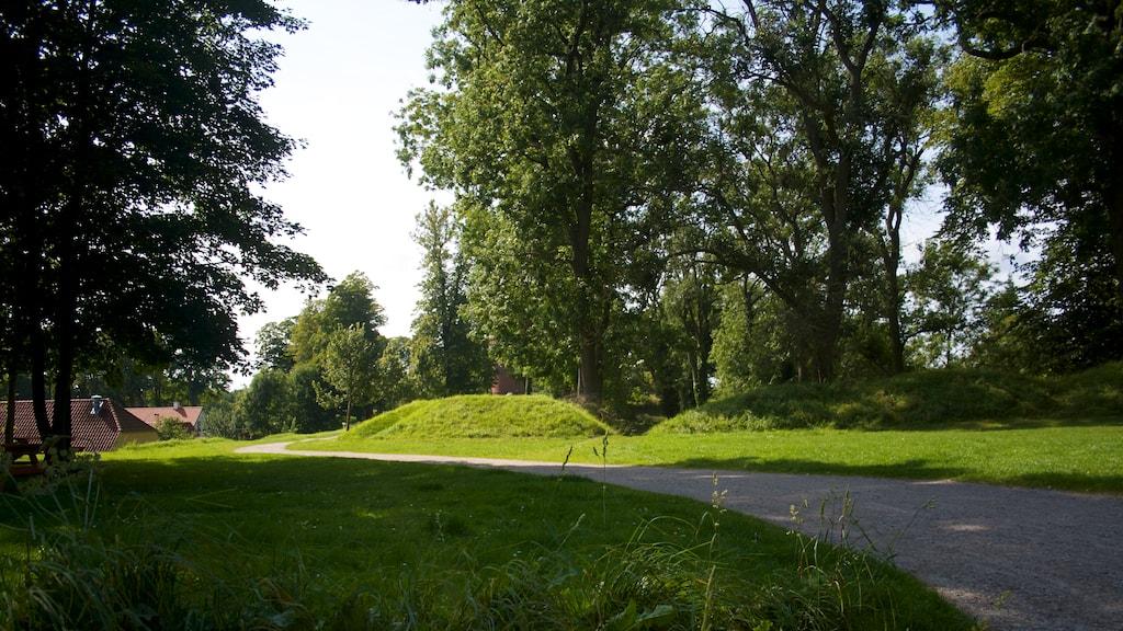 Nyborg Vold - Kronprinsens Bastion