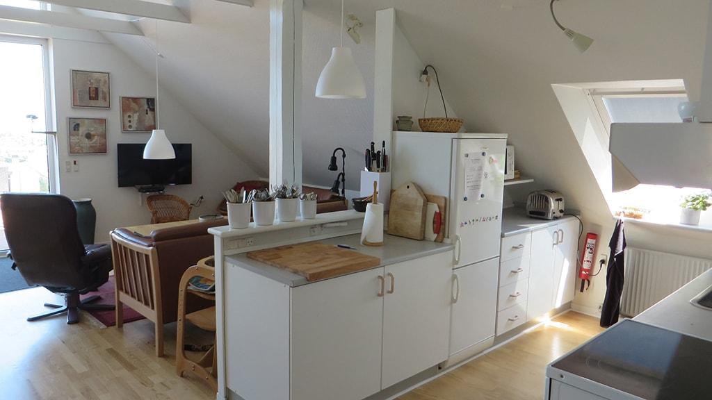 Nyborg Fyn Danmark Kildegaarden Bed and Kitchen Ferielejlighed Køkken