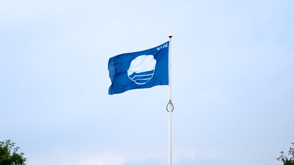 Nyborg Strand Blå Flag vejrer