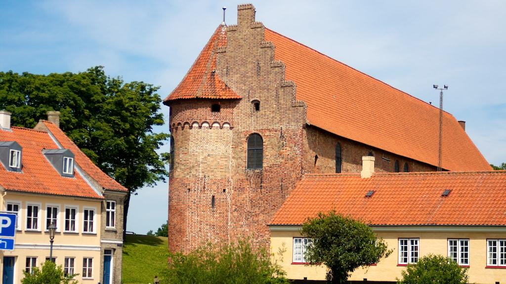 Nyborg Slot Slotsgade