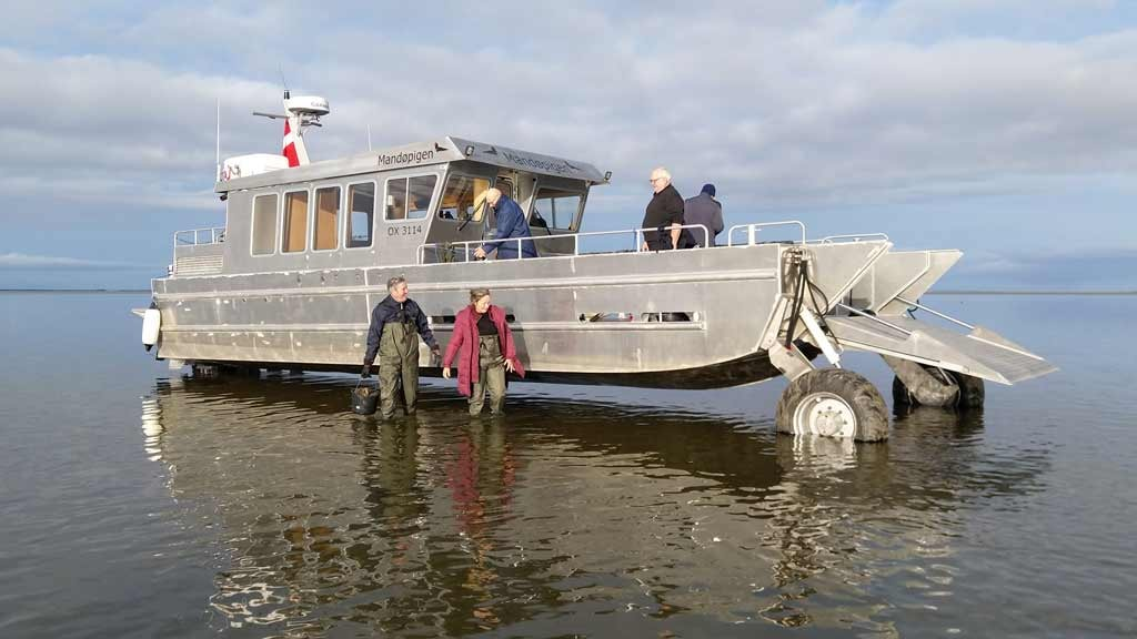 Tour boat Mandoepigen | Wadden Sea tours | VisitRibeEsbjerg