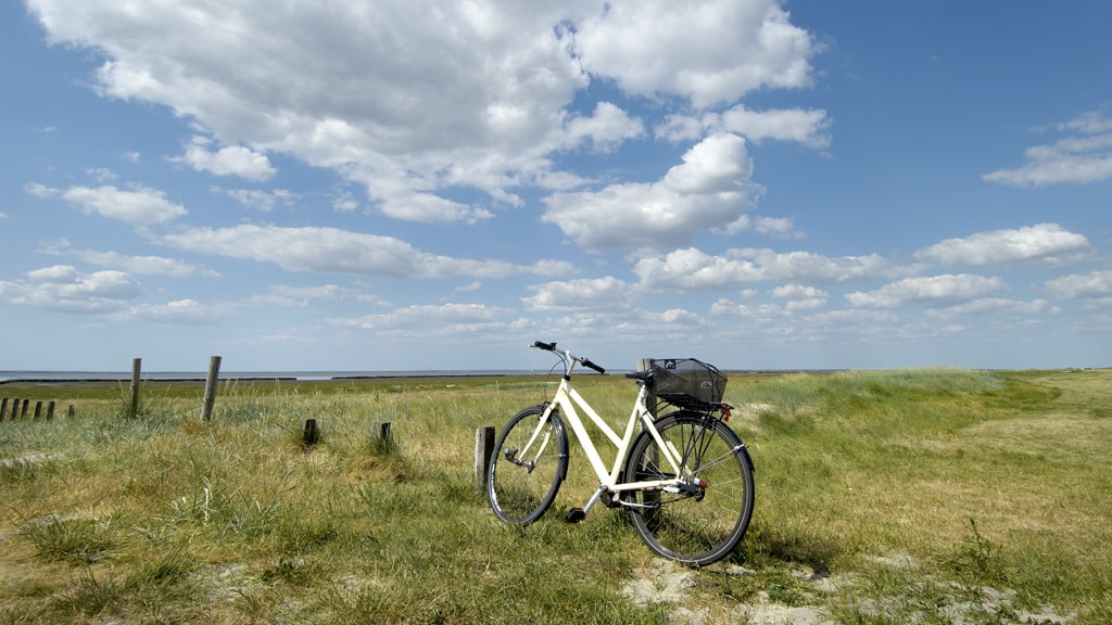 Bicycle on the dike at Mandø