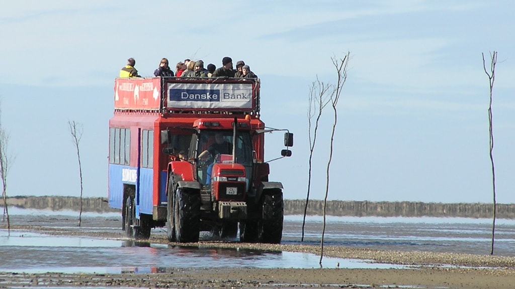 Der Mando Bus auf dem Weg nach Mando