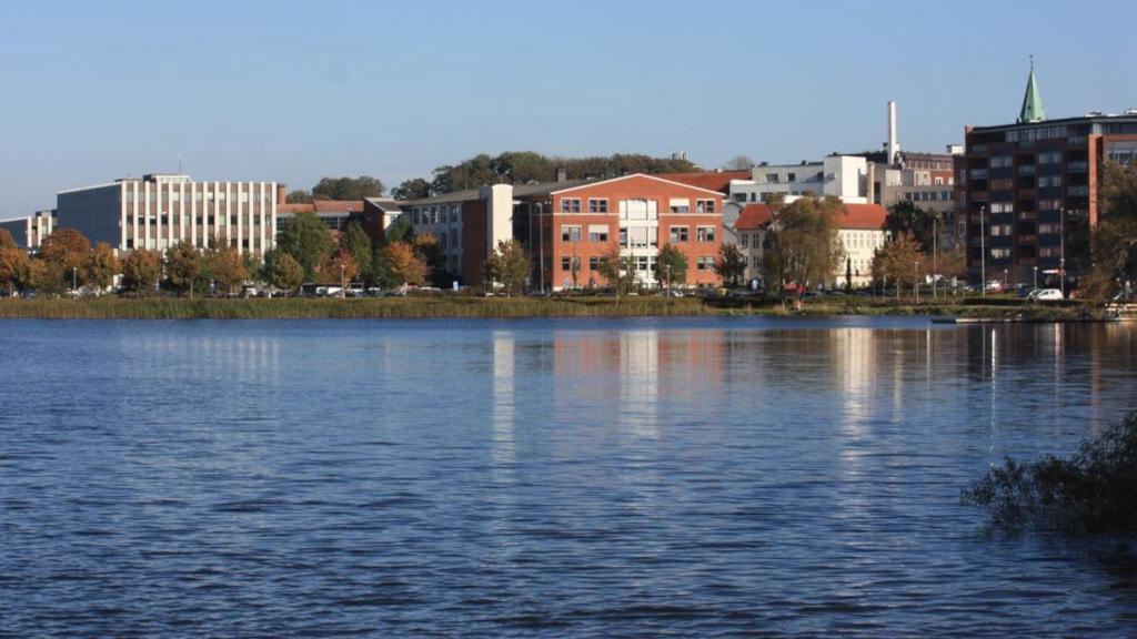 Silkeborg Langsø