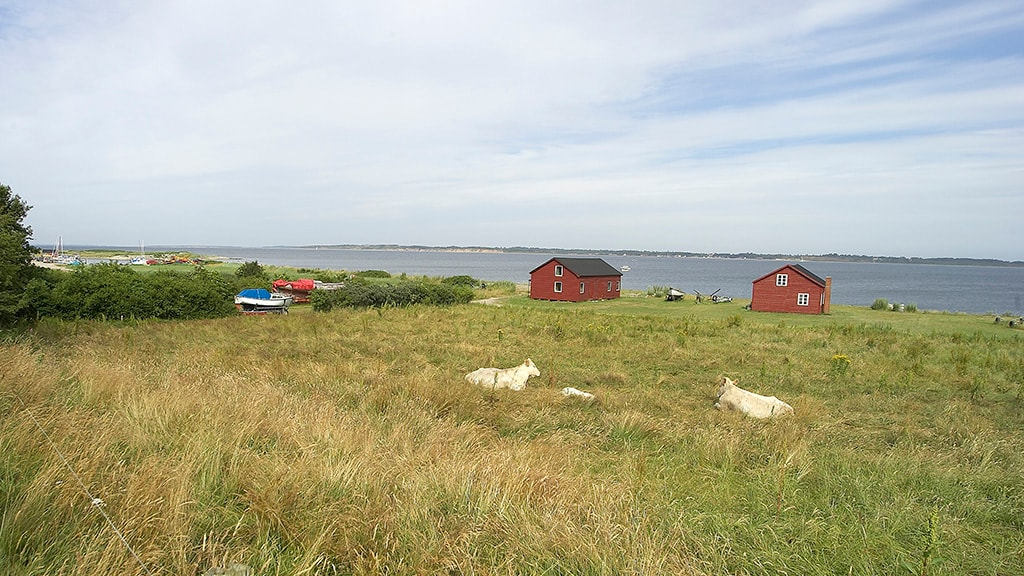 Humlum Fiskerleje & Camping