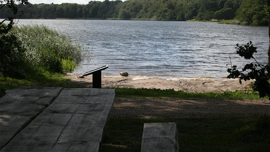 Jels Midtsø