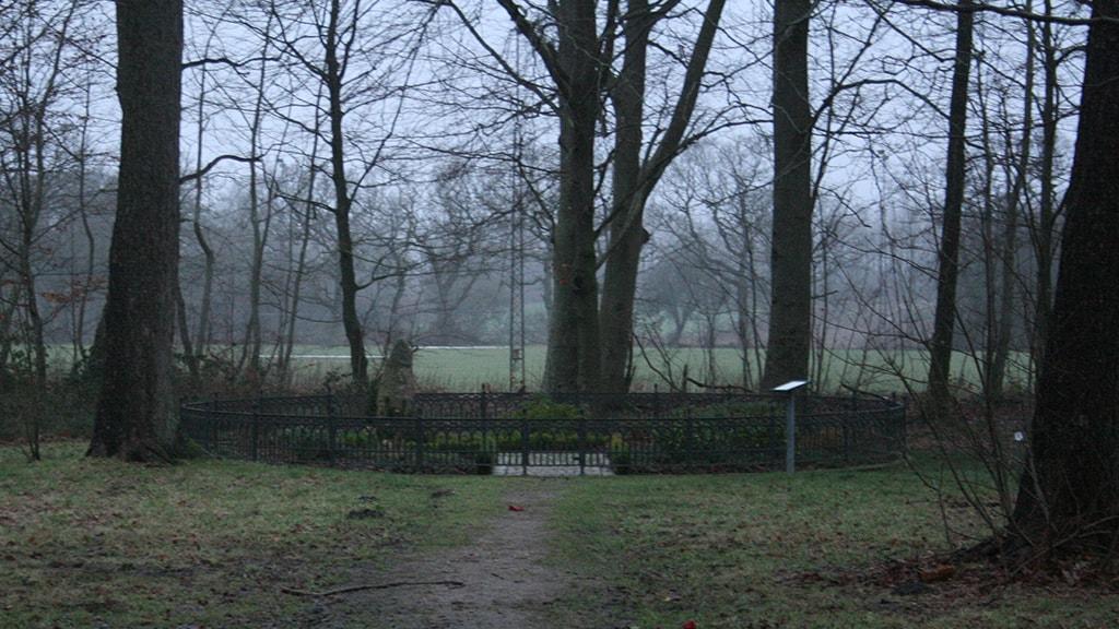 Gravsted i Grønvang Skoven, Vejen