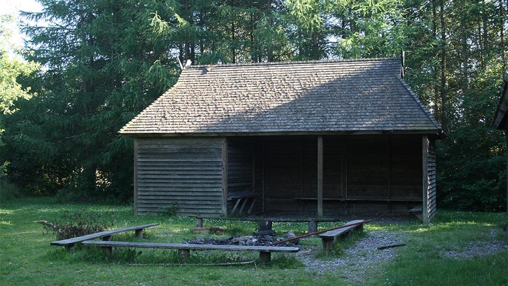 Skoleskoven, shelter by Vejen