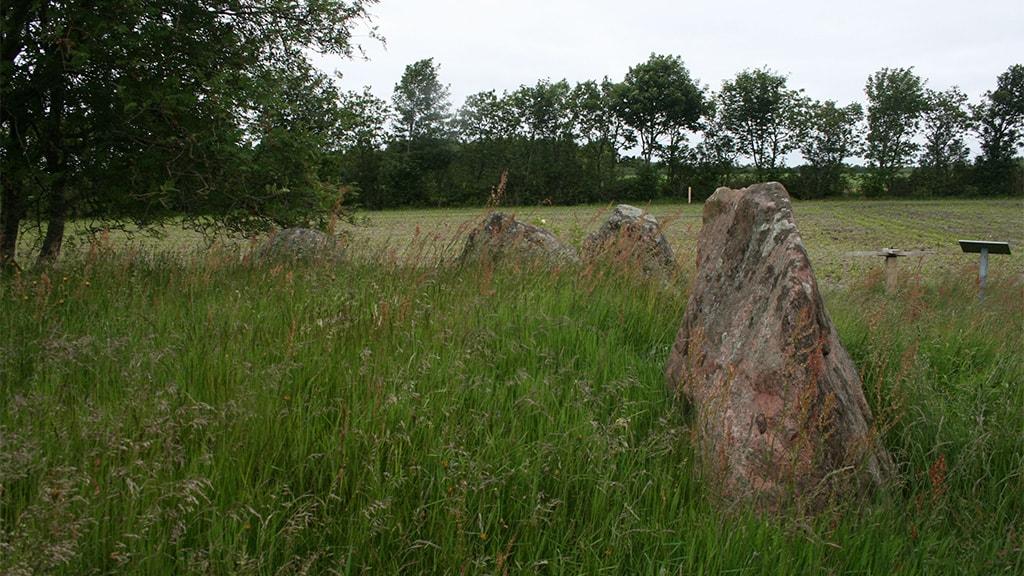 Longe dolmen, Vittrup