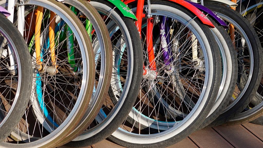Cykeludlejning i Kolding