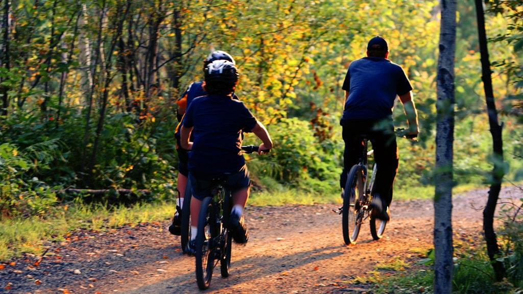 Cykeltur i Kolding Ådal
