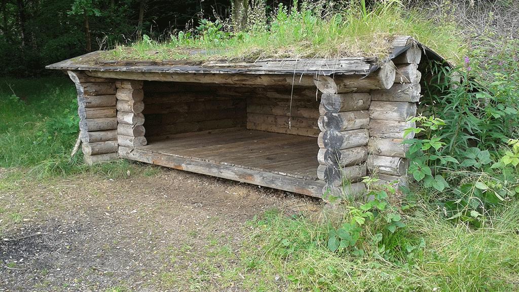 Haderup-Shelterplads