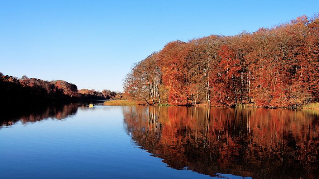 Bygholm Sø en solskinsdag om efteråret