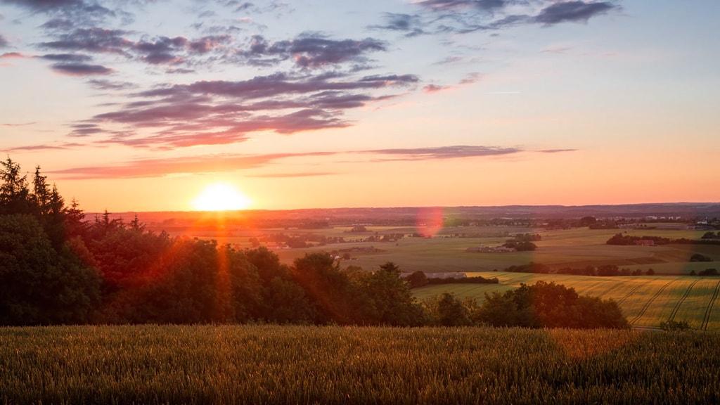 Udsigt ved solnedgang på Purhøj