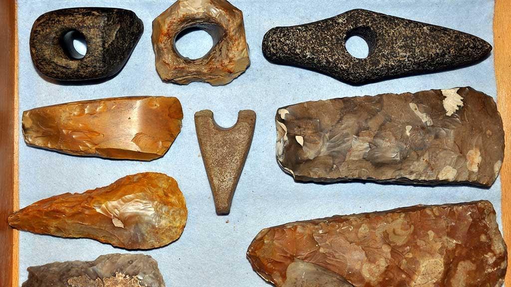 Stenøkser fra Tremhøj Museum