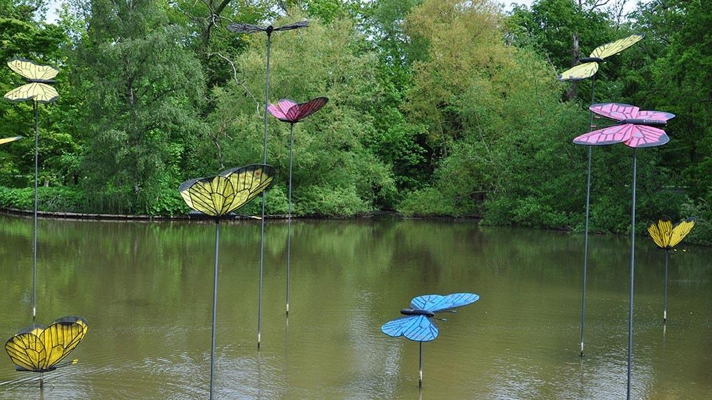 Sommerfuglene i Munke Mose