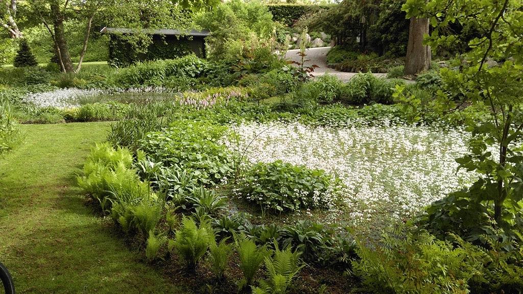 Kulturbotanisk Have i det østlige Odense