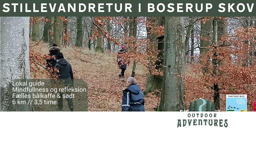 Mindfulness og stillevandring i Boserup skov