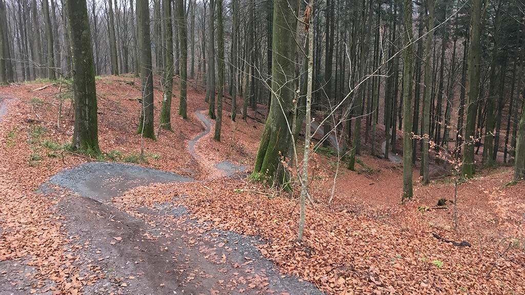 Mountainbikesporet i Sønderskoven