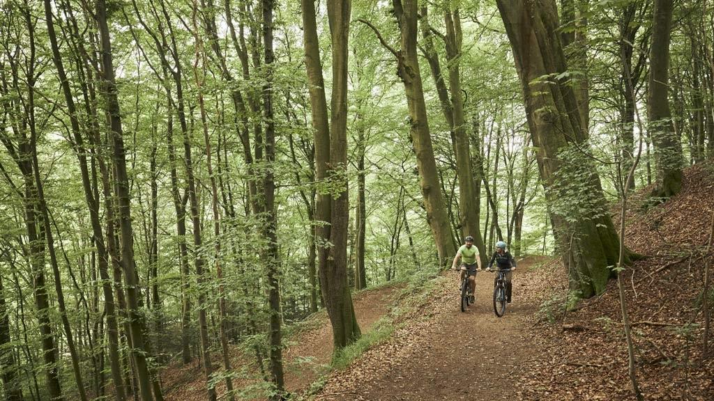 Cykelrute: Grejsdalen - tourinspor