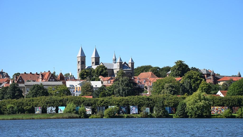 Viborg panorama