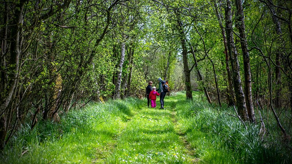 Grønne udflugtssteder i Aarhus