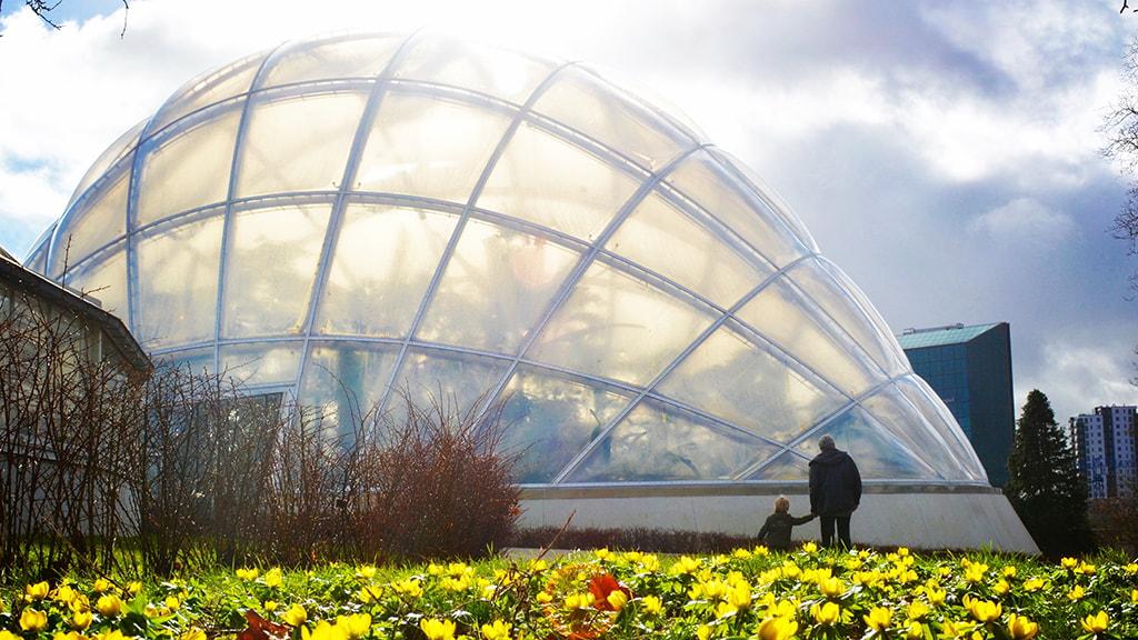 Gewächshäuser im Botanischen Garten Frühling